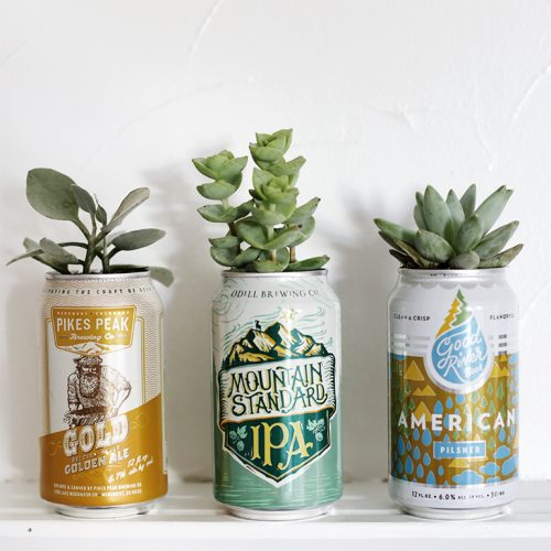 DIY Beer Can Planter @themerrythought