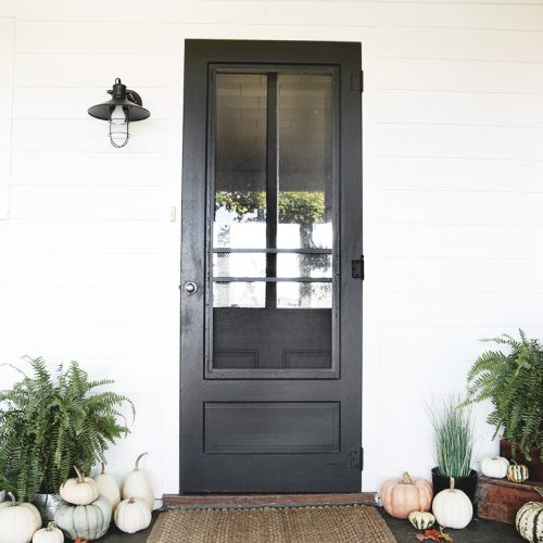 black front door with pumpkins and ferns around it