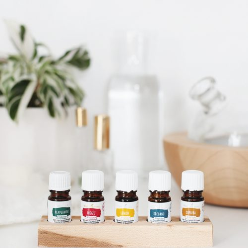 DIY Essential Oil Storage Tray @themerrythought