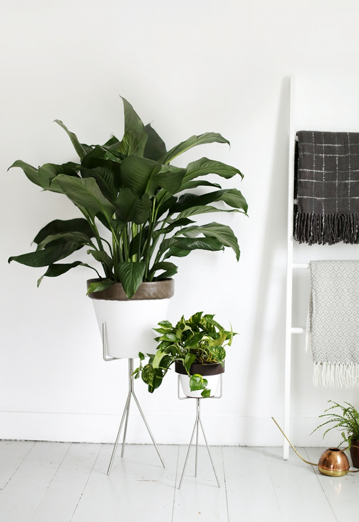 DIY Leather Trim Planters @themerrythought