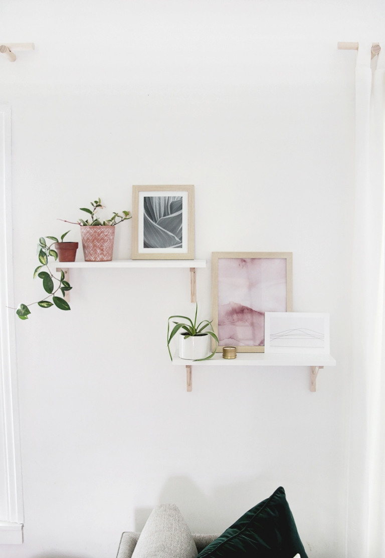 white shelves with plants and picture frames