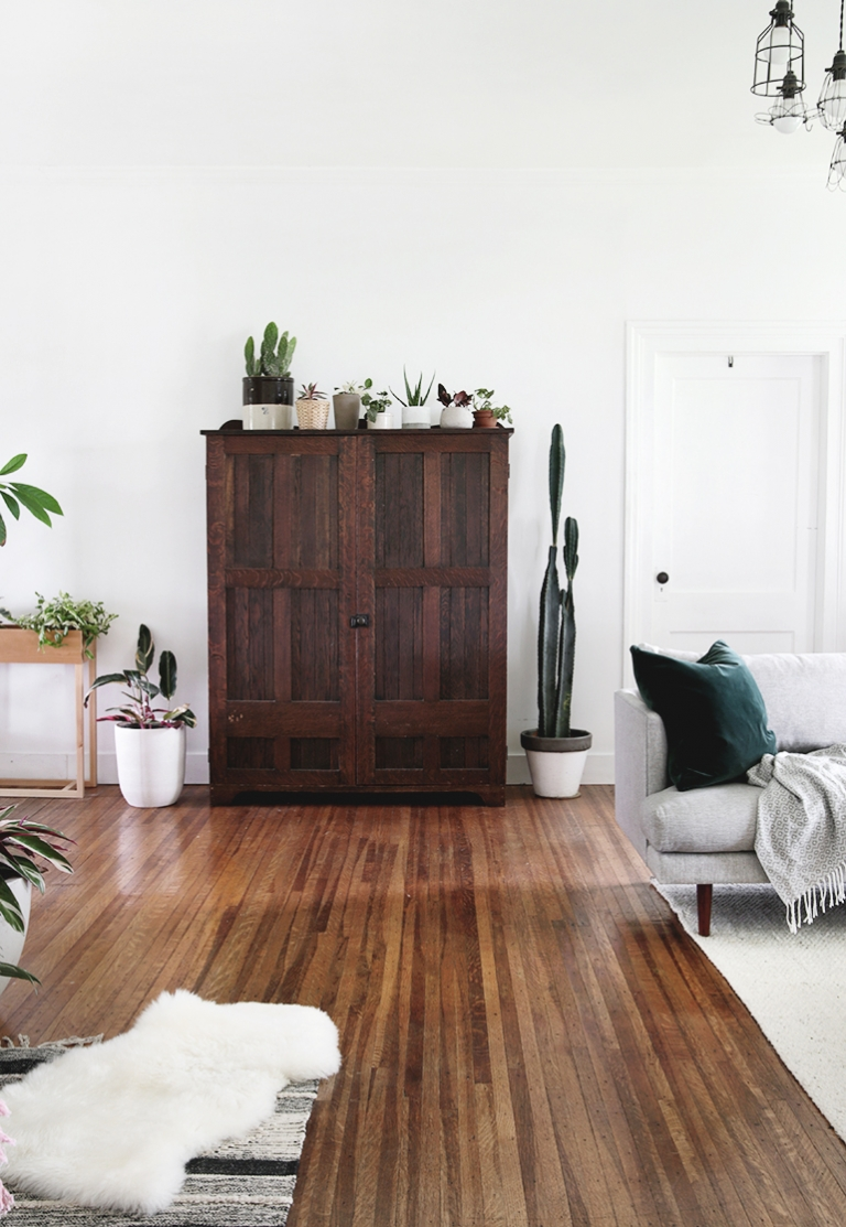 wood cabinet with plants
