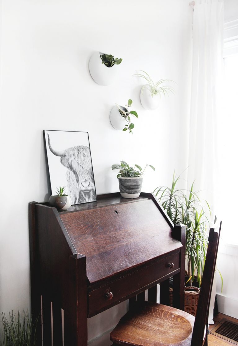 wood desk with plants