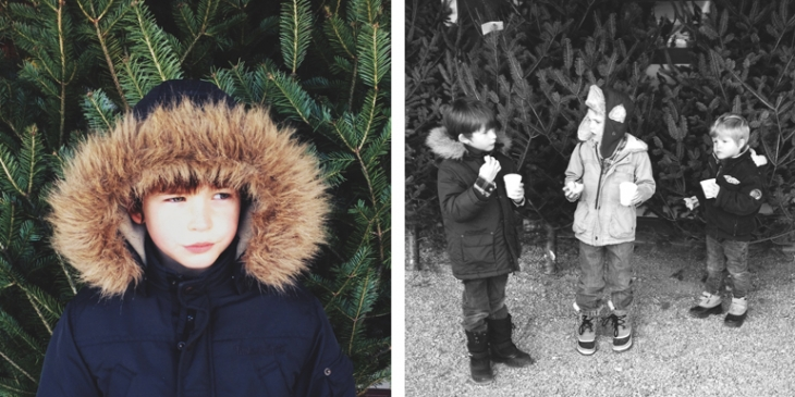 Christmas Tree Hunt  - The Merrythought