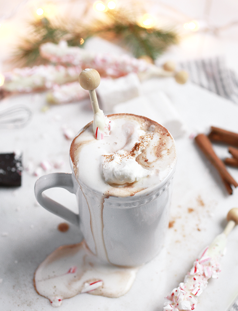 Ultra Creamy Mocha Hot Cocoa Recipes — Dishmaps