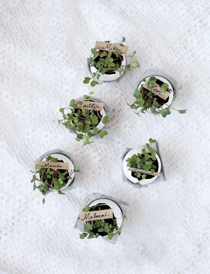 DIY Eggshell Place Card Holders @themerrythought