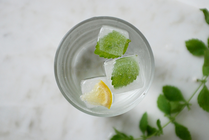 Herb Infused Ice Cubes @themerrythought