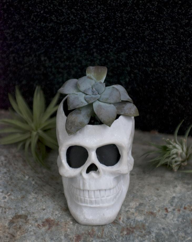 DIY Skull Planter @themerrythought